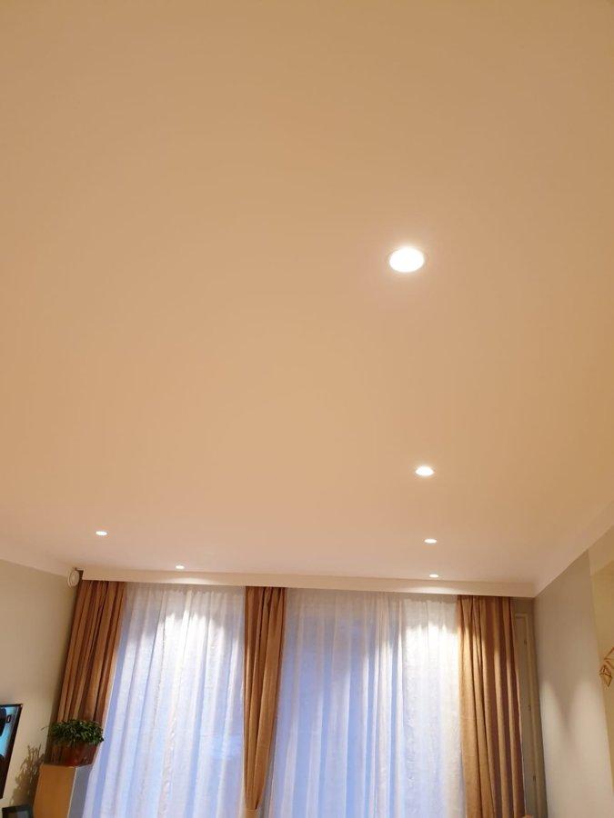 10W CREE Adjustable LED light